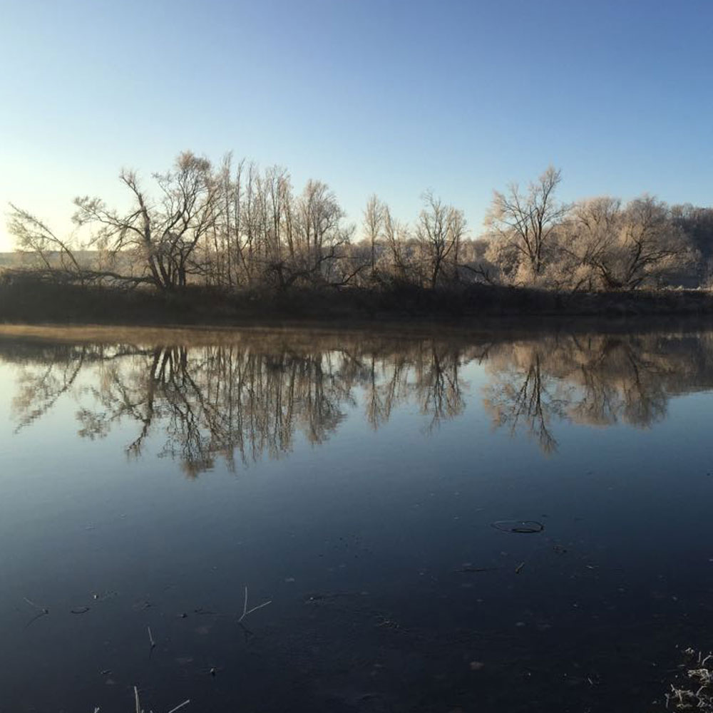 Saalekiez Winterimpressionen am Saaleufer