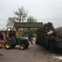 Aufstellung Weihnachtsbaum in der Saalekiez - Felsenbühne